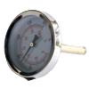 Termometro para cubeta